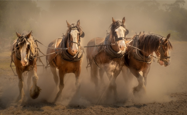 Gary Beresford Photo-125