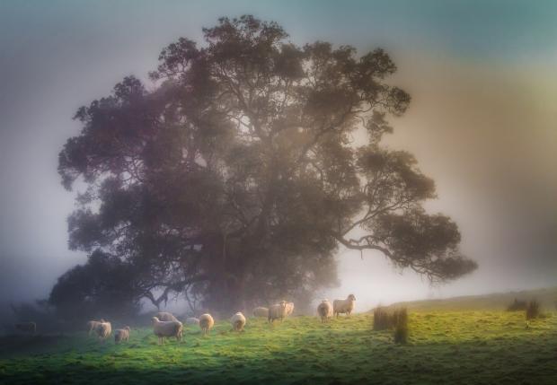 Gary Beresford Photo-19